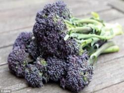 Чудесный овощ оздоравливает клетки