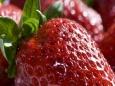 Сезонная ягода: три несладких блюда из клубники
