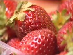 """Как нас травят овощами и фруктами - """"Тот еще фрукт""""  (видео)"""