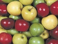 Как сохранить яблоки на зиму подольше?