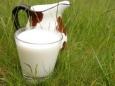 Беларусь с 1 сентября откажется от второго сорта молока