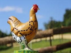 Самые «ядовитые» части курицы, которые точно не стоит есть