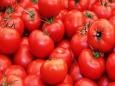 Какие факторы влияют на вкус помидоров?